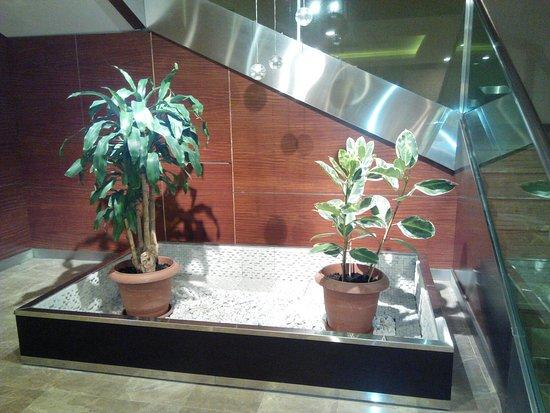 QafqaZ Point Boutique Hotel: IMG_20160804_205446_large.jpg