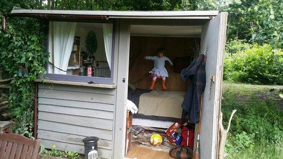 Welsummer Camping: IMG-20160716-WA0022_large.jpg