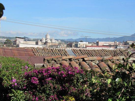 Casa San Bartolome: View from upper garden