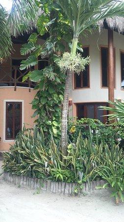 Villas Paraiso del Mar: photo0.jpg