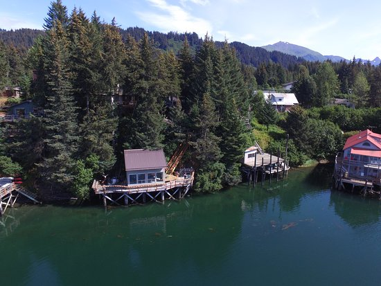 Seldovia B&B and Cabin Rental at high tide