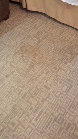Holiday Inn Express Hotel & Suites Bethlehem Airport - Allentown Area: Huge stain by bed