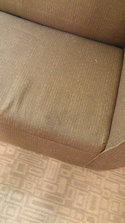 Holiday Inn Express Hotel & Suites Bethlehem Airport - Allentown Area: Stains on couch