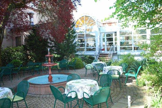 Hotel Cafe Konditorei Goldinger : The Back Garden Facing the Cafe