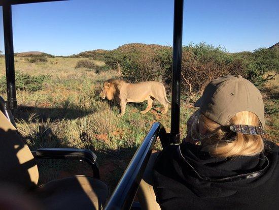 Tswalu Kalahari Game Reserve, Sudáfrica: You get pretty close!