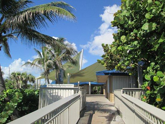 Boynton Beach, FL: Walk way...outside showers on right