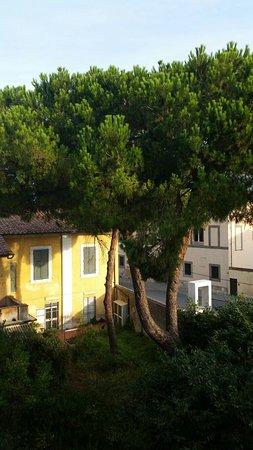 Hotel Villa Kinzica: Volveremos