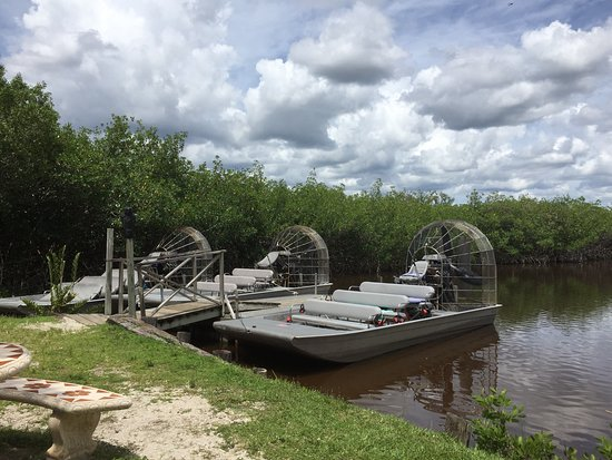 Jungle Erv's Everglades Airboat Tours: photo2.jpg