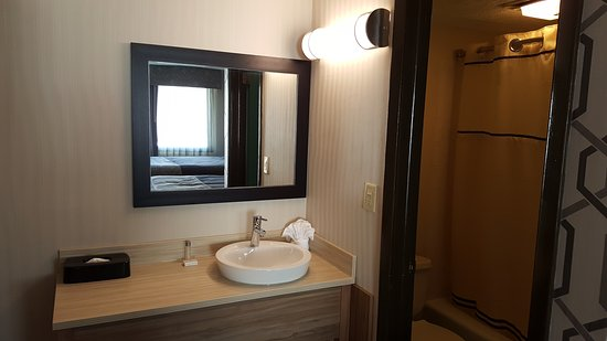 Aartpark Hotel Inn at Lewiston: Bathroom
