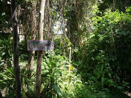 Phi Phi Paradise Pearl Resort Foto