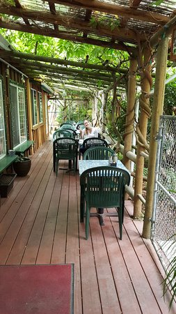 Cafe Zanzibar : Outdoor arbour seating area