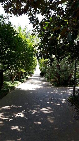 Relais Villa Savarese: 20160723_112711_large.jpg