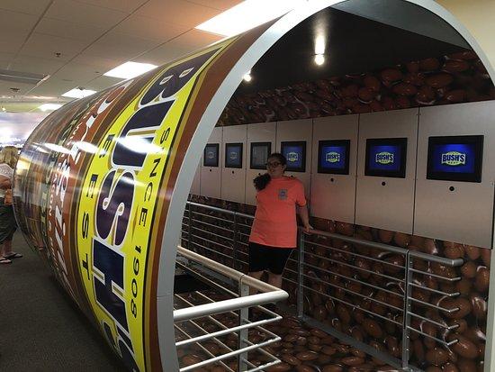 Bush's Beans Visitor Center: photo1.jpg