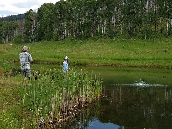 Clark, CO: Orvis Endorsed Fly Fishing at The Home Ranch