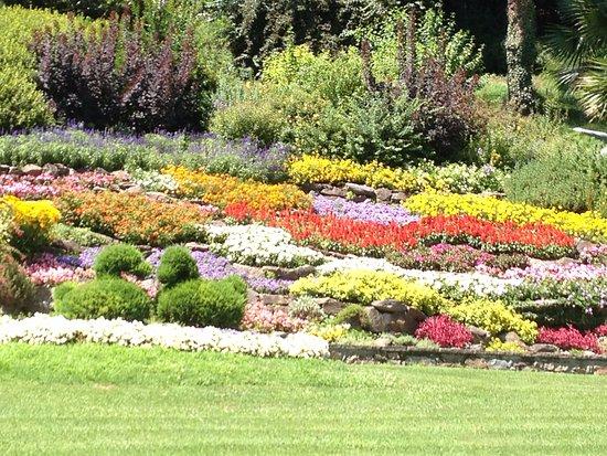 aiuola fiorita foto di villa carlotta tremezzina