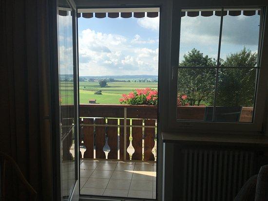 Landhotel Hartenthal: Aussicht aus meinem Zimmer :-)