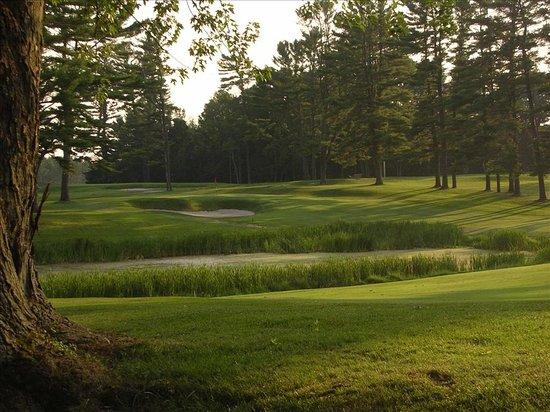 Hanover Inn Dartmouth: Golf
