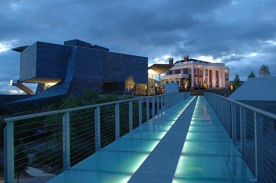 Hampton Inn & Suites Chattanooga / Downtown: Glass Bridge on Riverwalk