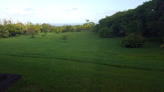 Pahoa, Χαβάη: Beautiful view into the Garden/Farm with the Ocean in the distance.