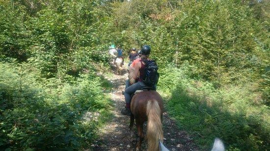 Studor, Eslovenia: Guide at ranch 😄