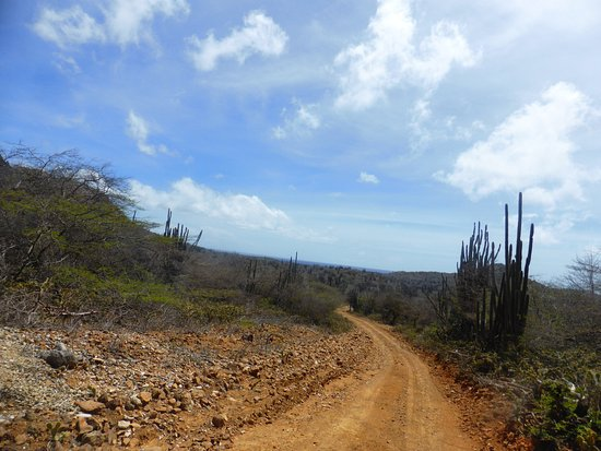 Washington-Slagbaai National Park, Bonaire: photo1.jpg