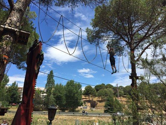 Arbre Aventura Park