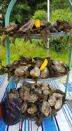 Kinvara, Irland: Local Oysters and Herring