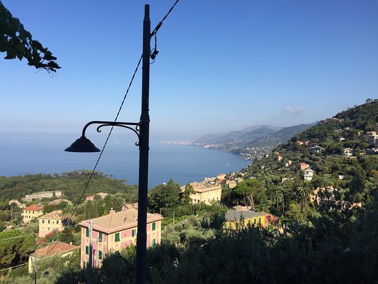 I Maggiolini : Photos showing the view, superb breakfast and dog Tobia. A great place to stay!