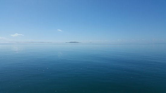 Big Blue: whale watching