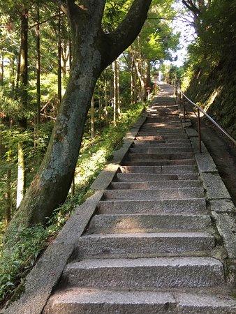 槇尾 山 施 福 寺
