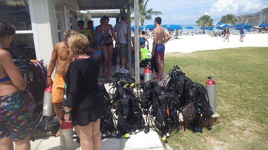Hamilton, Bermuda: Intro to Scuba - Snorkel Park - Bermuda