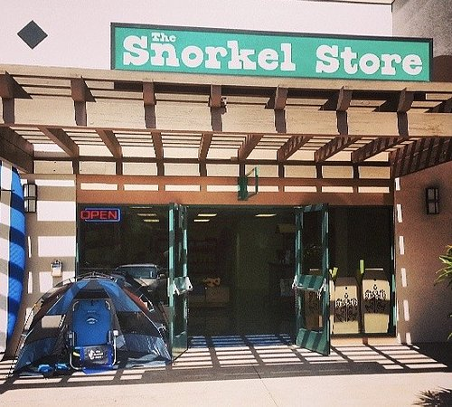 The Snorkel Safari
