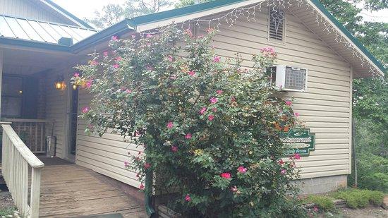 Thomaston, GA: 20160730_163033_large.jpg