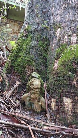 Mount Dandenong, Αυστραλία: 20160804_152927_large.jpg