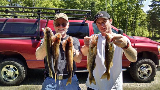 Manitowish Waters, WI: We took 9 walleye total. These were just a few from the top of the pile. Good eating!!