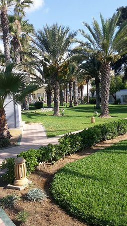 Hotel Palace Hammamet Marhaba: 20160726_081002_large.jpg