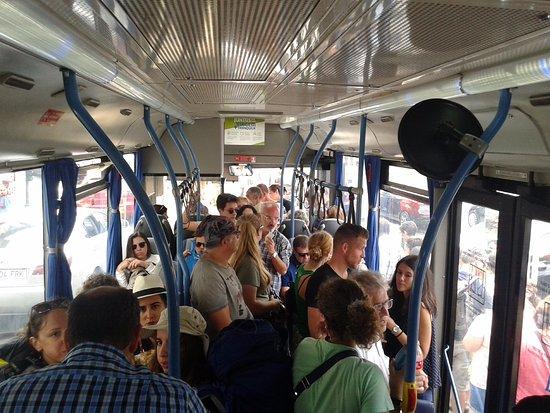 Sintra Tourist Bus 434