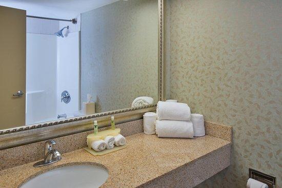 埃克斯頓萊恩維爾快捷假日酒店照片