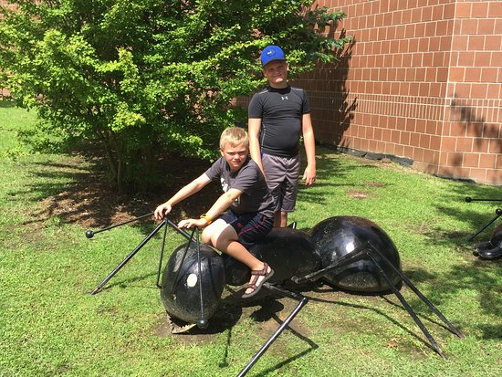 Jackson, MS: Enjoyed our most recent visit to the science museum. Hiking trails awesome!