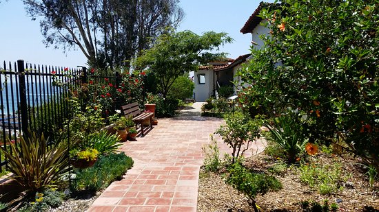 San Clemente, CA: Side garden