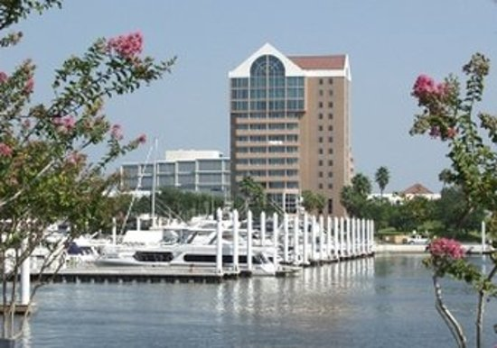 Image result for south shore harbour resort