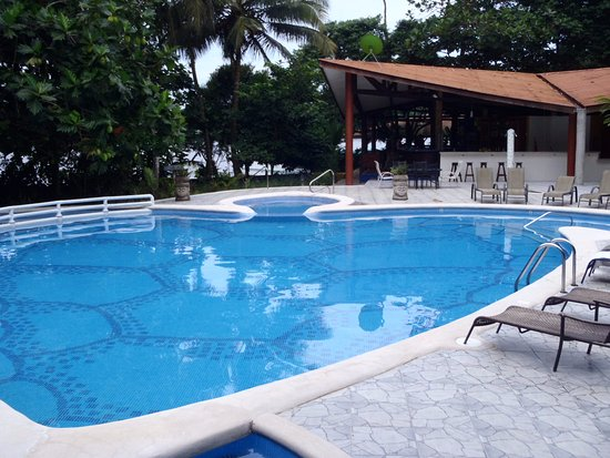 Aninga Lodge: La alberca tiene forma de tortuga, está entre el área de spa y el bar.