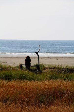 Grayland, WA: meditation
