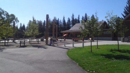 Seasons of Bowness Park