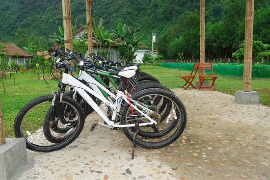 Bike for guests
