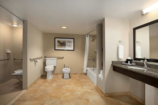 Embassy Suites by Hilton Hotel Phoenix - Tempe: Accessible Bathroom