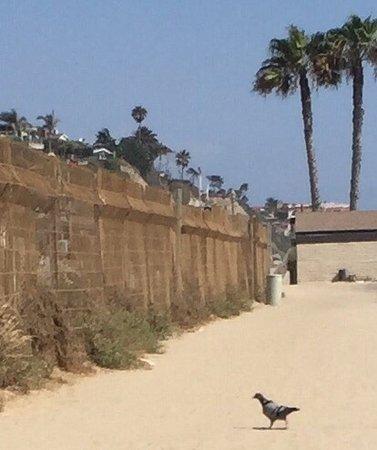 San Clemente, Kaliforniya: photo2.jpg