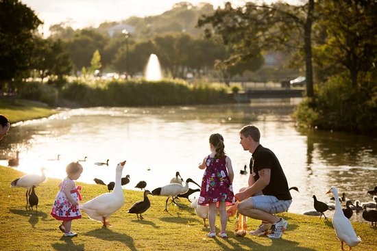 Gympie, Australia: feeding birdlife at Lake Alford