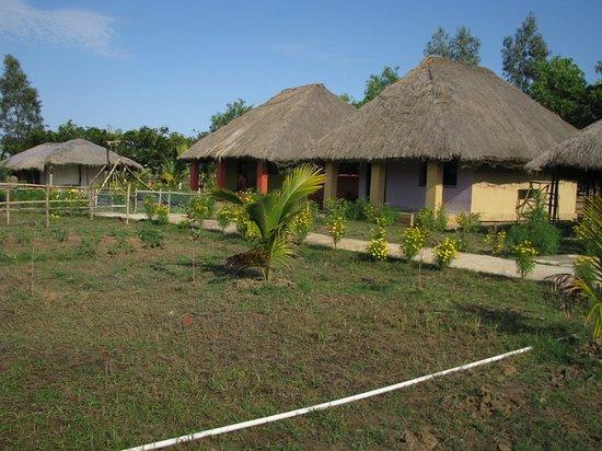 Estuarine Village Resort Bhitarkanika