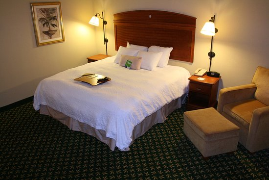 Hampton Inn Auburn: King Standard